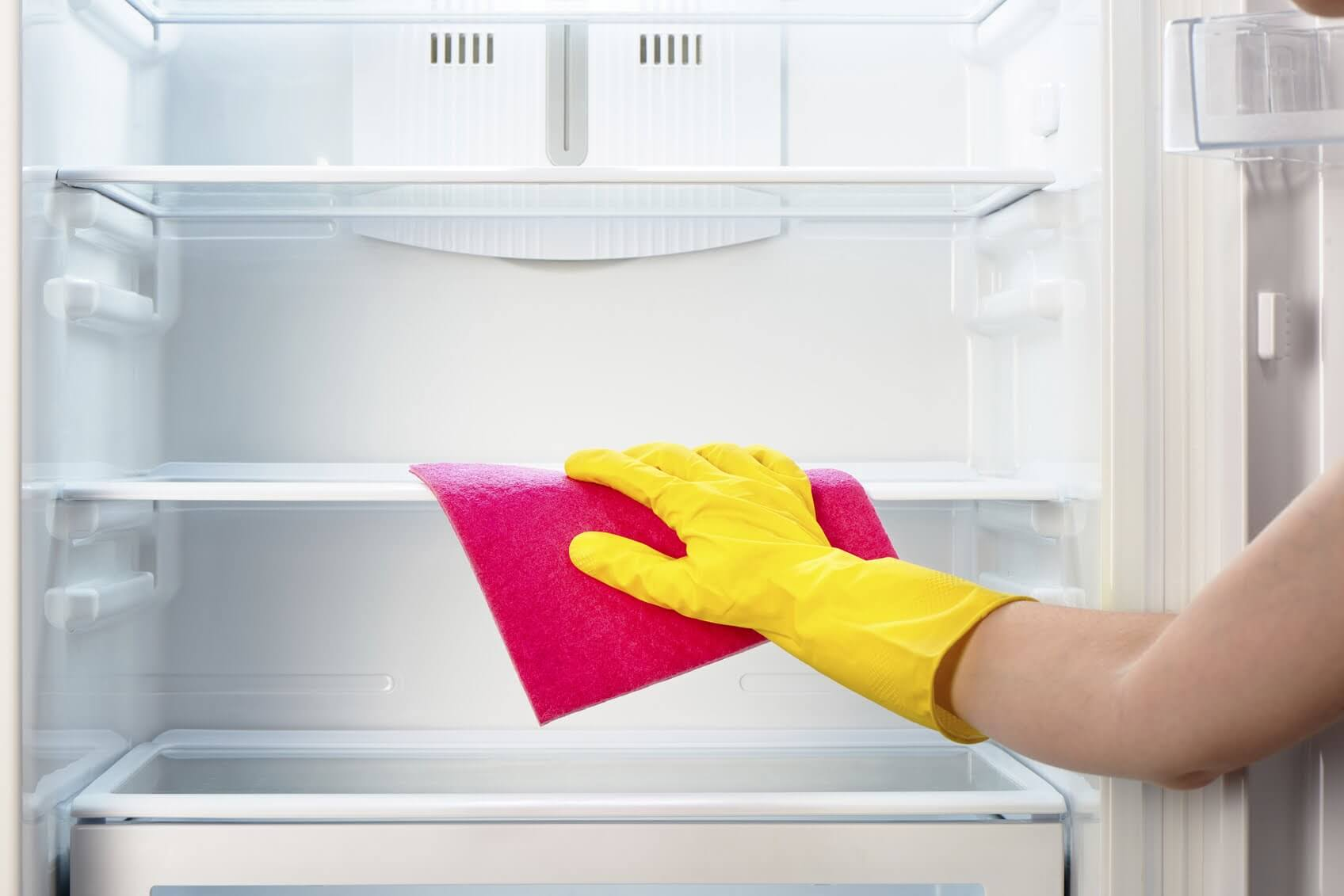 What to do if mold appeared in your fridge?